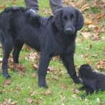 Rakel tillsammans med ett av sina småsyskon - 14 oktober 2007