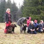 Birgitta, med pappa Tore och Mimer, Barbro med Mette, Malena med Wilma, Ville med Isa och Johan med Märta,