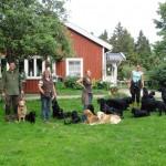 Hartmut, Anke, Inka och Inger med 16 st tyska och svenska hundar innan vi går på promenad!
